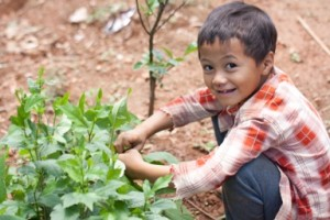 kid with plant